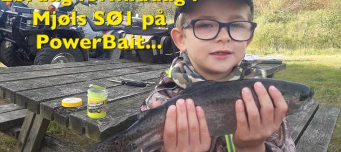 Mjøls Lystfiskeri: Efterårsferien er startet ved SØ1…