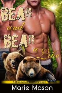 Review!!  Bear and Bear Alike by Marie Mason