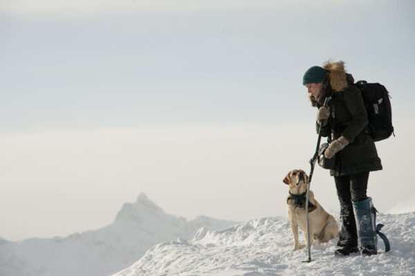 Kate Winslet and the dog in The Mountain Between Us