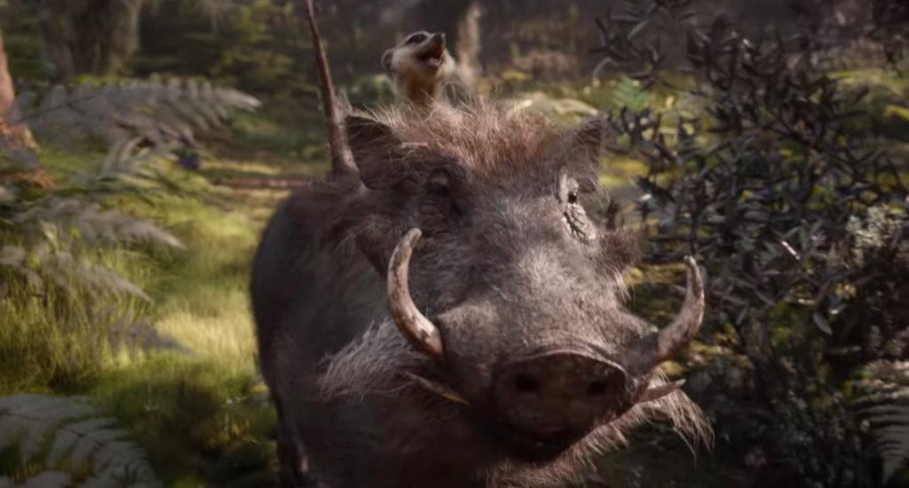 Timon riding on Pumbaa in Disney's The Lion King