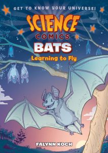 Bats Learning to Fly First Second Books
