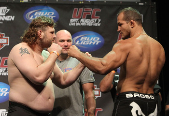Roy Nelson to fight Dos Santos, if Mark Hunt cant make it back
