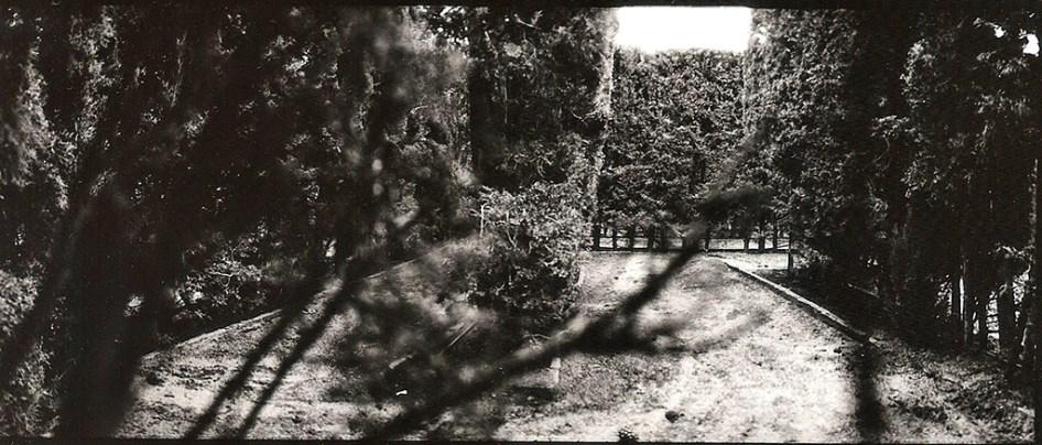 sueño del laberinto de horta, 2012