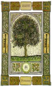Oracle celte des arbres pommier
