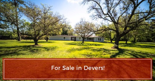 FOR SALE! 106 Highway 61, Devers, TX 2