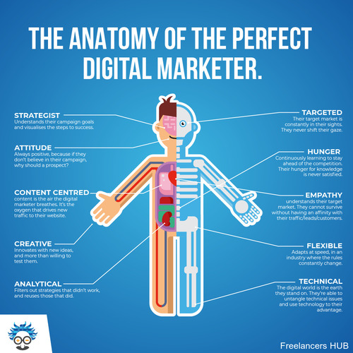 #marketing #digitalmarketing #business #infographic #anatomy #entrepreneur #marketingtrend #einsteinmarketer #education #learning