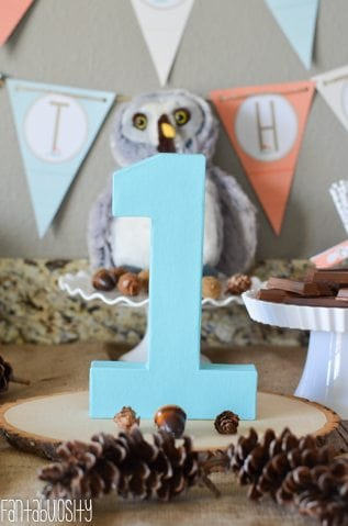 Woodland Friends First Birthday Party Fantabulosity