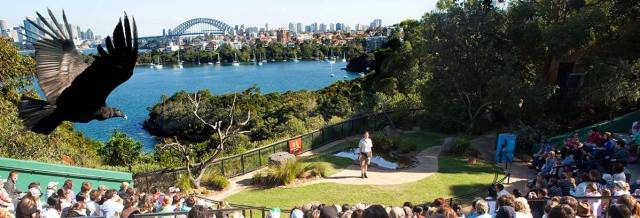 TARONGA ZOO, SYDNEY - most fascinating zoos