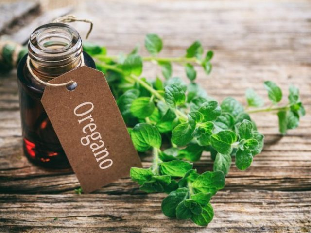 Using oregano oil - how to remove skin tags safely the natural ways