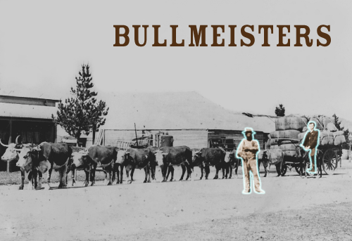 bullmeisters