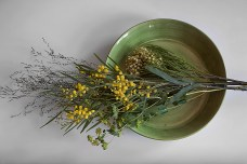 Living room flower Fantastic-Frank norr mälarstrands blommor