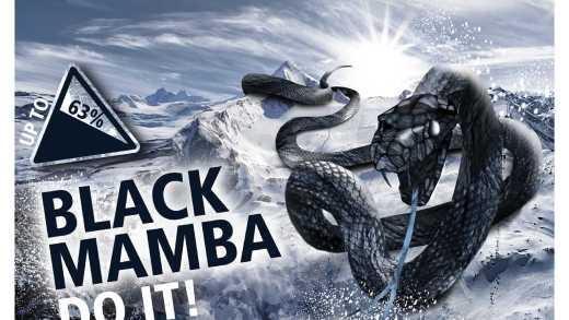 Samenvatting boek black mamba Boek: Black