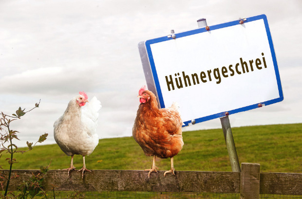 Hühnergeschrei Oberösterreich