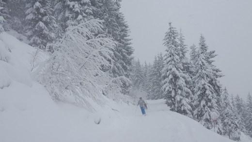 Veel verse sneeuw en storm