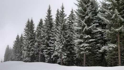 Sneeuw en kou, maar hoe lang nog?