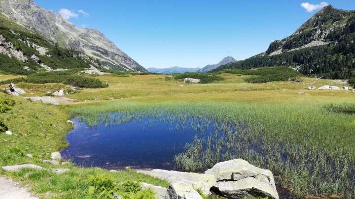 Bergmoeras Weißsee