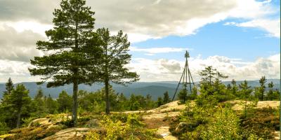 Toppen av Bukollen med utsikt mot Nordmarka - Oslomarka - Romeriksåsene - Fantastiske marka