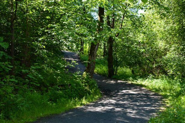 Grønt og frodig langs Alnaelva - Oslomarka - Fantastiske marka