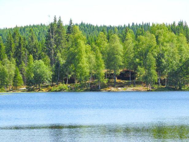 DNT hytta Svartvannshytta i Vestmarka - Oslomarka - Fantastiske marka