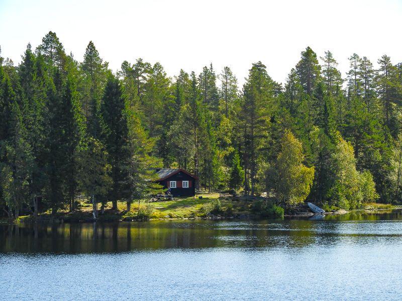 7 tips til hyttetur med barn i Oslomarka – Fantastiske Marka