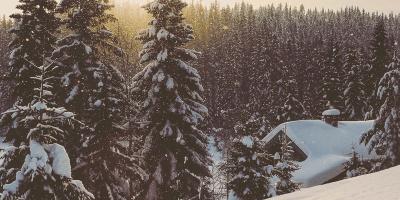 Snøen faller over Ringkollen - oslomarka - krokskogen - fantastiske marka