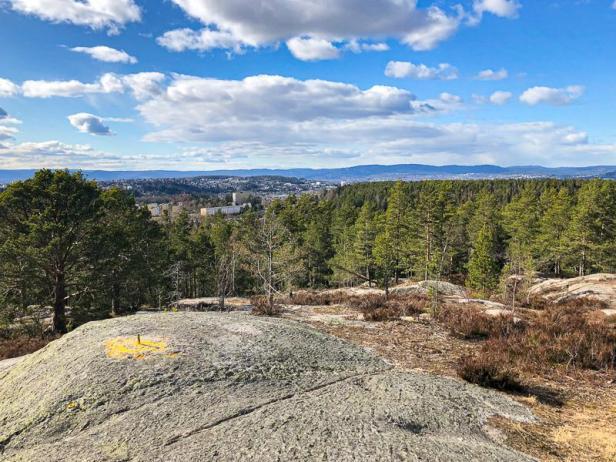 Flott utsikt fra barnevennlige Sankthansåsen - Oslomarka - Østmarka - Fantastiske marka