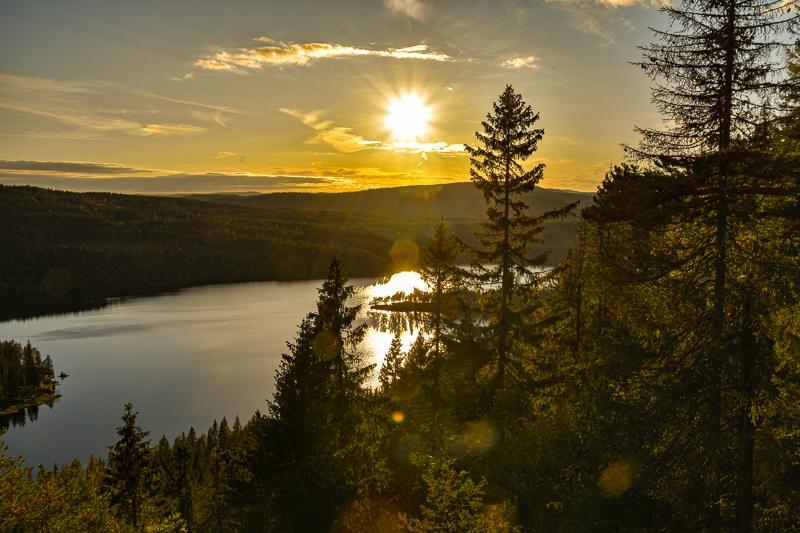 10 tips til kortreiste hengekøyeturer i Oslo – Fantastiske Marka
