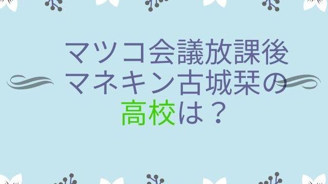 マツコ会議放課後マネキン古城栞の高校は?経歴や年収・両親の職業は?