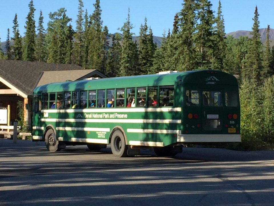 Fantasy Aisle, Fantasy Aisle, alaska travel recommendations, Denali Visitor's Bus only way to see Denali National Park