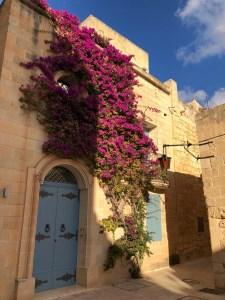 Fantasy Aisle, Mdina old city walls Malta