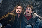 order-of-the-phoenix-sirus-harry-potter