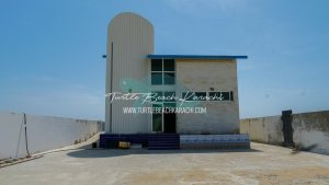 Luxury Beach Hut on Rent at Turtle Beach Karachi - TB11