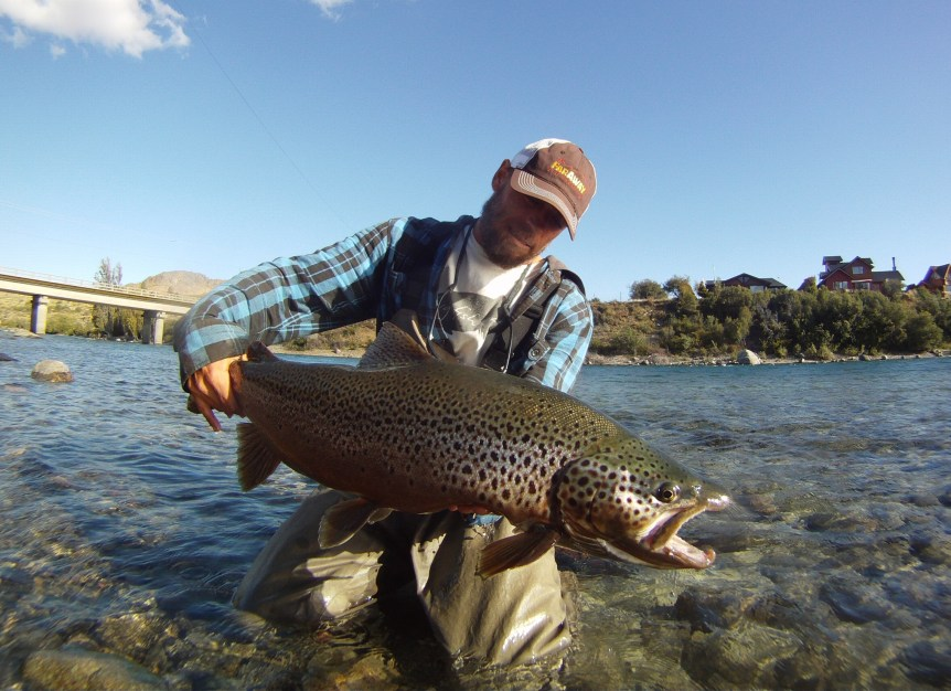 Rodrigo Amadeo with a brown trout from the Limay River in Argentina