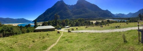 A nice view from the veranda of Austral Kings lodge.