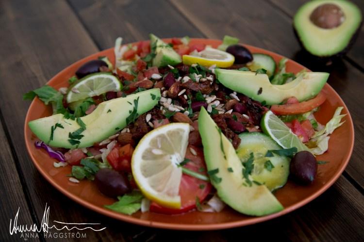 Vegansk sallad med bruna bönor och avokado på grekiska lunch restaurangen Farbror Nikos på Södermalm