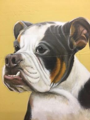 Bulldogge, Acryl auf Holz ca 35x35cm Bulldog