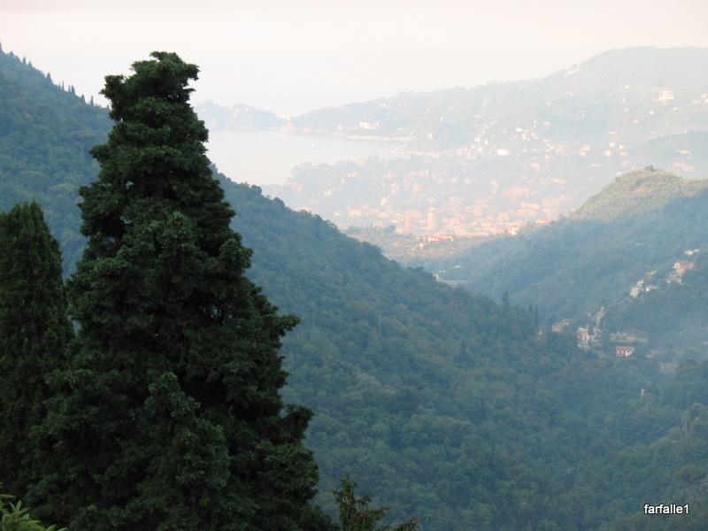 Rapallo in smoke