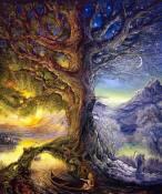 Polarité et symétrie de l'arbre de vie