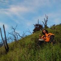 vegetasi terakhir sebelum puncak