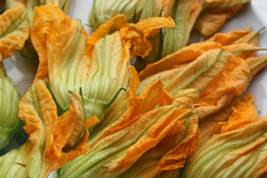 Frittata senza uova con fiori di zucchina