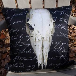 Skull Pillows