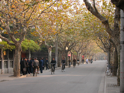 The Tranquil Sinan Lu in the Shanghai French Concession by bloompy