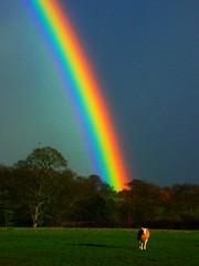 rainbow  (colours enhanced)