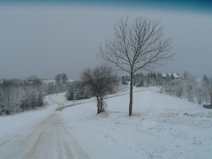 Wisconsin Winter 05 by pacific_pete
