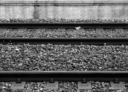 Líneas y piedras