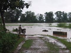 Kollibacchalu Dam -Malenadu Heavy Rain Effects Photography By Chinmaya M.Rao   (106)