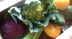 Autumn veg box