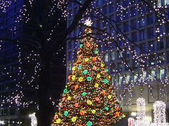 Chicago: Daley Plaza Christmas Tree (2006)