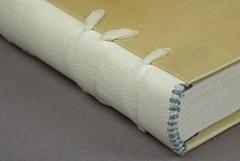 Detail: Espinoza Tawed Skin/Parchment model