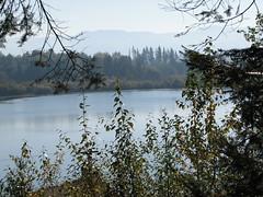 Harts Lake